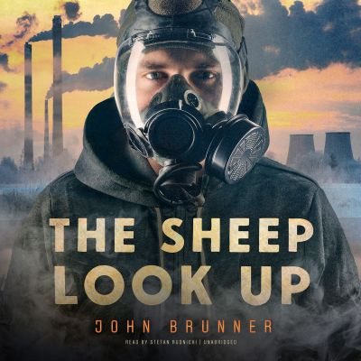 the-sheep-look-up-5